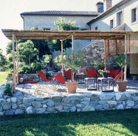 Bellorcia pergola in the garden