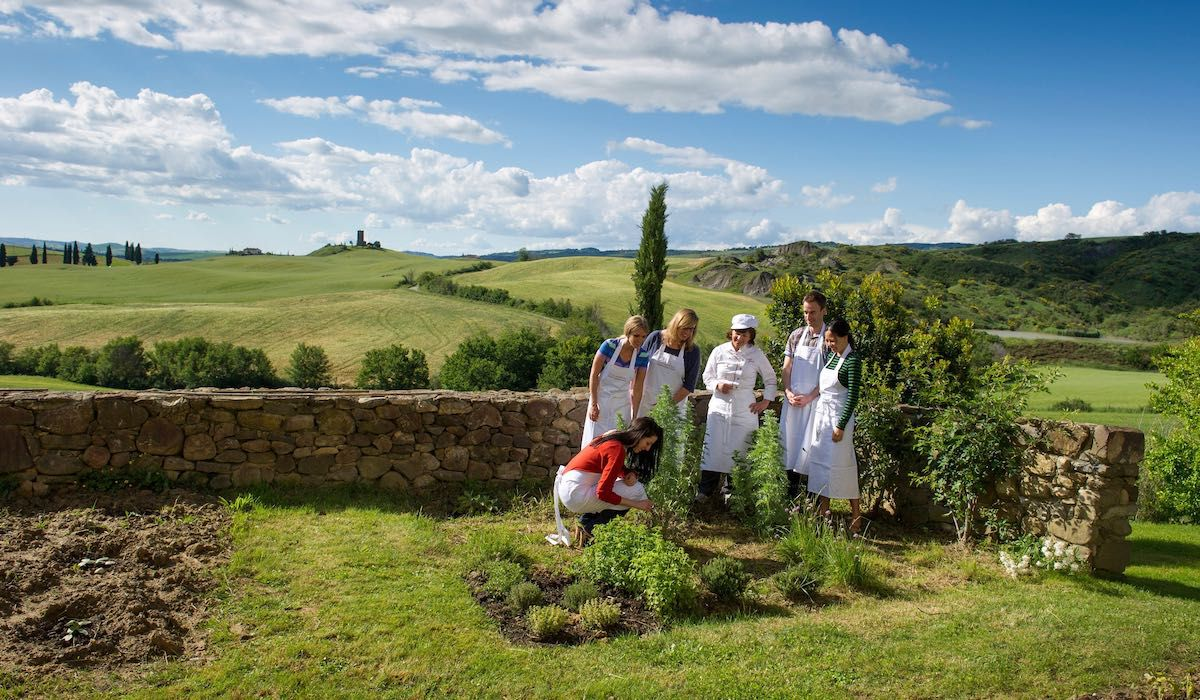 Picking fresh herbs at cooking school in Tuscany Bellorcia
