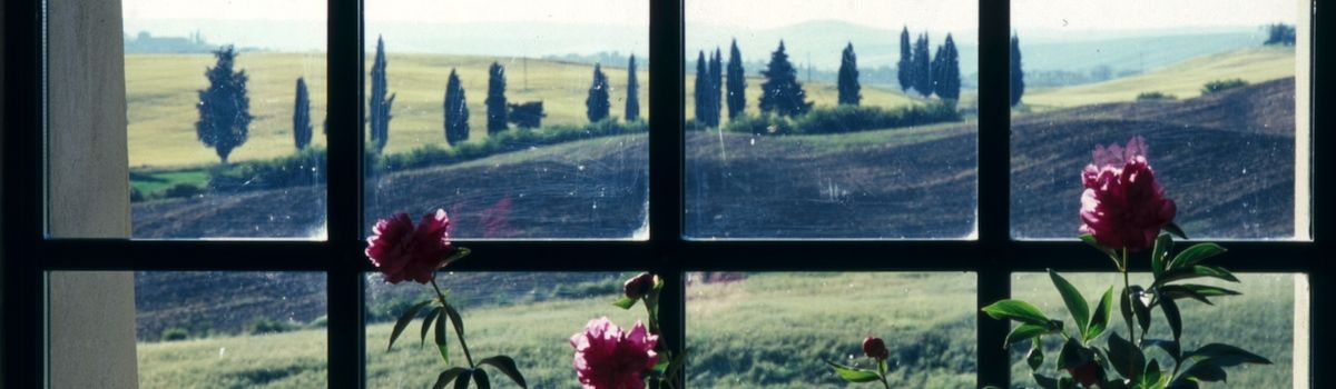 Tuscookany, view from the Bellorcia villa where the cooking classes in Italy are offered