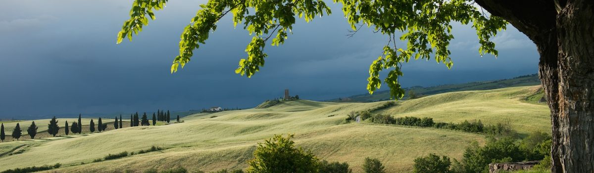 Tuscookany, view of Val d'Orcia from Bellorcia cooking vacation in Tuscany