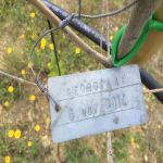 6-11-14 The Tuscookany nurture Program Olive tree donated 6 November 2014 planted in Torre Del Tartufo...
