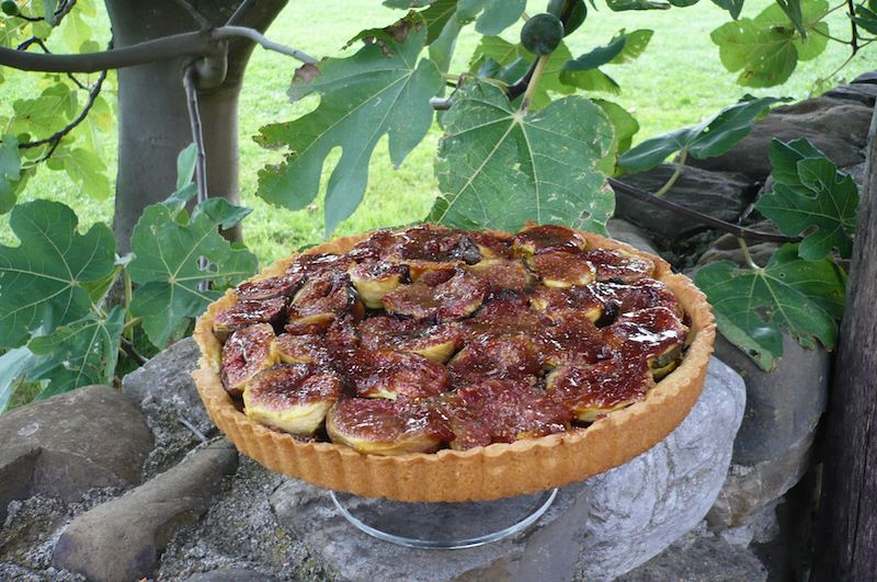 Tuscookany - Delicious Fig Tart Recipe